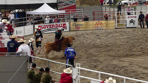 Rodeo - 15 Live Action