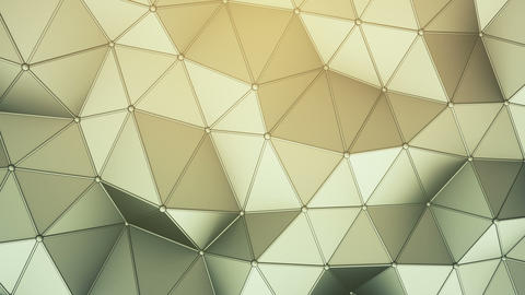 Triangulated polygonal surface 3D render seamless loop animation Animation