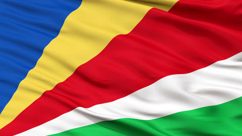 Close Up Waving National Flag of Seychelles Animation