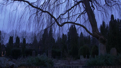 Spooky graveyard / cemetary at dusk - 4k Footage