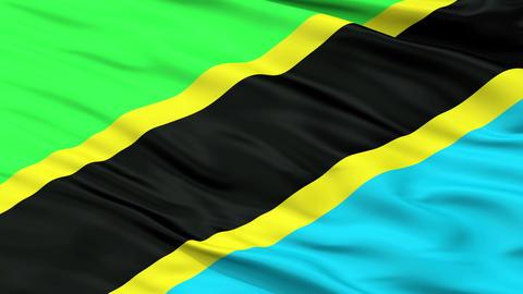 Close Up Waving National Flag of Tanzania Animation