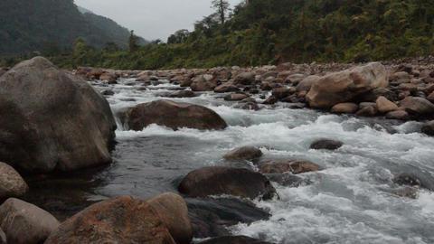 Joldhaka river, Dooars GIF