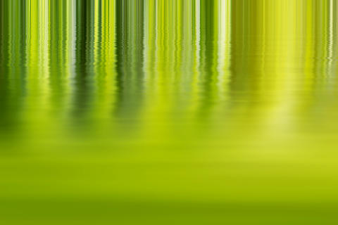 Shadow and Light - Abstract green Background フォト