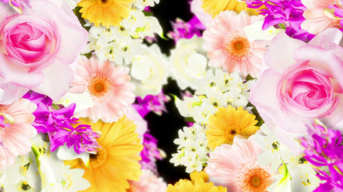 Many colorful flowers background, CG animation, Loop CG動画素材