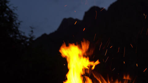 Fire in Nature Archivo