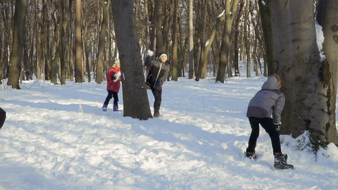 Cute brothers play snowballs in winter park Footage