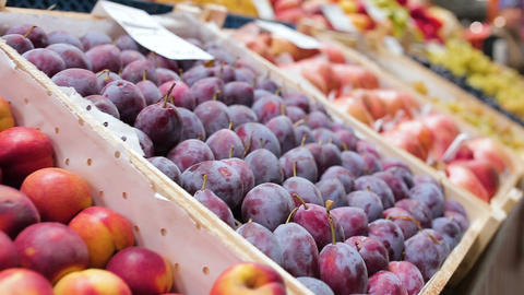 peaches plums pomegranates and grapes in boxes on market Footage