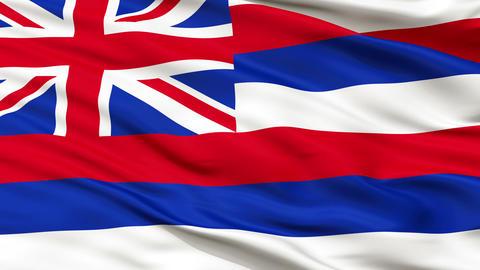 Close Up Waving National Flag of Hawaii Animation