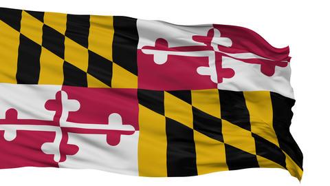 Isolated Waving National Flag of Maryland Animation