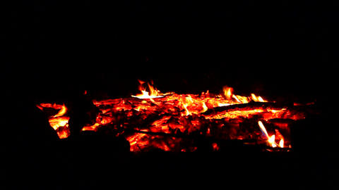 Campfire Embers and Coals Footage