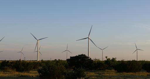 Wind Turbines in a field near Abilene Texas 영상물