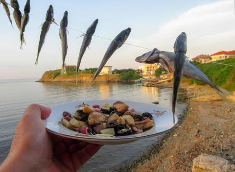 Mackerel (Caranx trachurus) of fishing line and seafood salad Photo