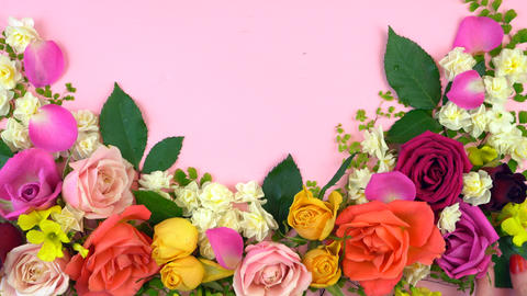 4k Springtime overhead flat lay display of fresh roses and jonquil buds on pink Live Action