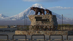 Sculpture of Kamchatka brown bear family - she-bear with bear cub. Time lapse GIF