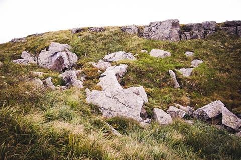 stones on the field Photo