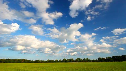 Midwest Prairie Scenery Footage