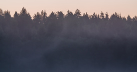 Time lapse of mist rising in front of a forest silhouette before sunrise Footage