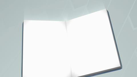 Repair guidebook zoom in animation Animation
