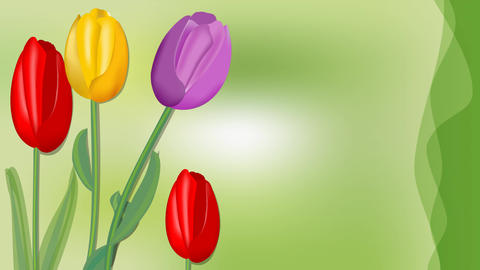 Beautiful happy birthday banner with tulips growing on green blurry background Animation