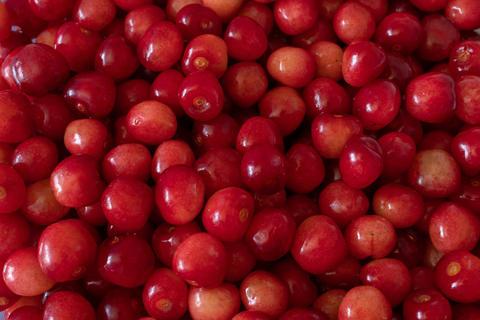 Cherries フォト