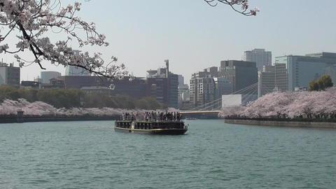 毛馬桜ノ宮公園 6 ビデオ