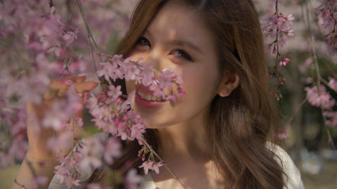 Attractive young Japanse girl walking through beautiful cherry blossoms on a per Footage