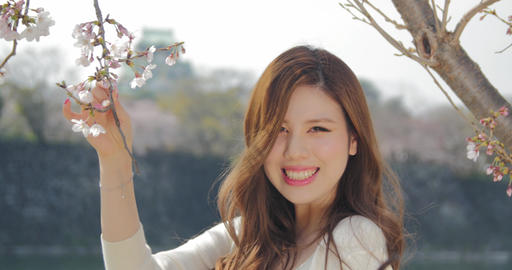 Beautiful Japanese young women smells the cherry blossoms sakura at Osaka castle Footage