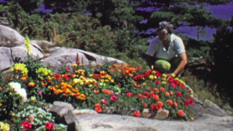 1961: Women gardening flower bed peeking out of rocky landscape Footage