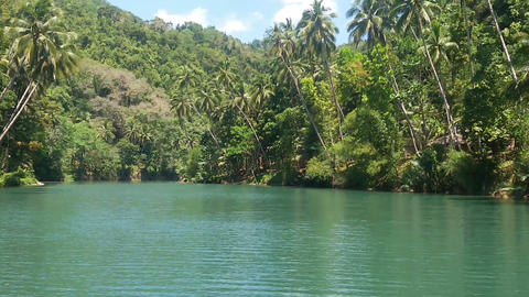 River in the jungle. Philippines Footage