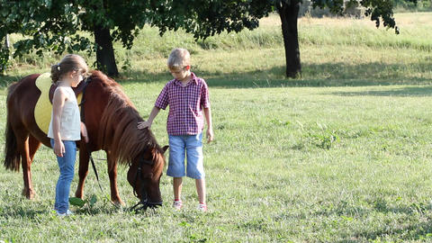 Little girl and boy with pony horse Footage