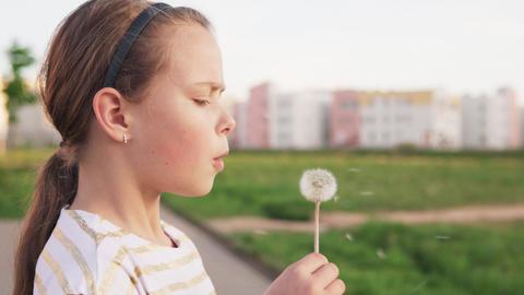 Cute little girl blowing on dandelion on city lawn Footage