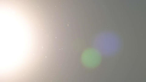 Dust particles and pollens flying in the sky. Sun flares Footage