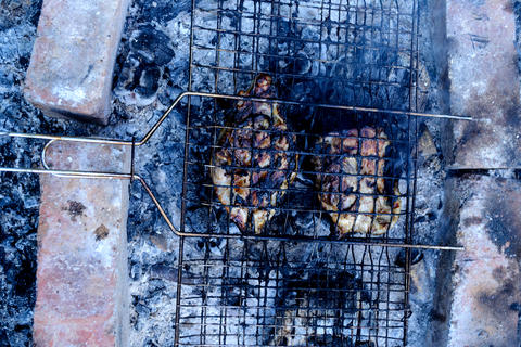 Two pieces of chicken in barbecue grill Photo