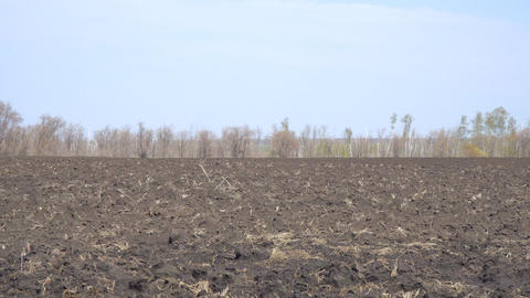 Field with plowed land Footage