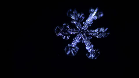 snowflake melts in the dark Footage