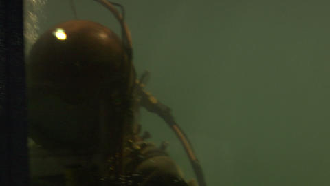 diver 01 Stock Video Footage