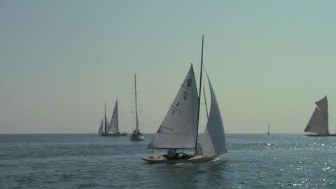 old sail regatta 01 Stock Video Footage