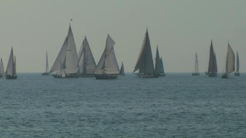 old sail regatta 03 Stock Video Footage