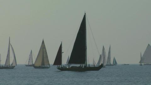 old sail regatta 05 Stock Video Footage
