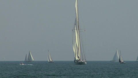 old sail regatta 07 Stock Video Footage