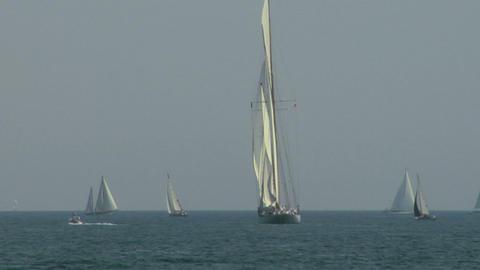 old sail regatta 07 Stock Video Footage