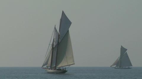 old sail regatta 11 Stock Video Footage