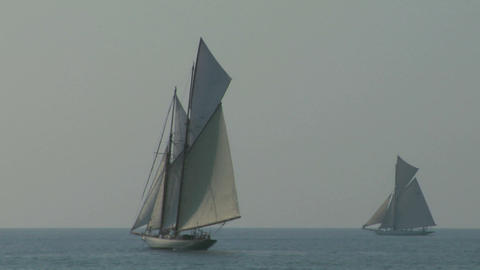 old sail regatta 11 Stock Video Footage