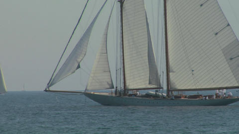 old sail regatta 13 Stock Video Footage