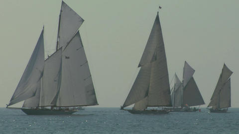 old sail regatta 15 Stock Video Footage