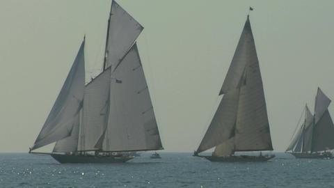 old sail regatta 15 Stock Video Footage
