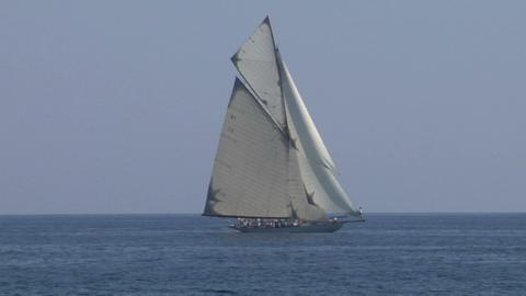 old sail regatta 23 Stock Video Footage