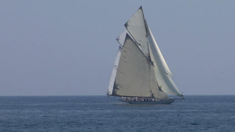 old sail regatta 23 Stock Video Footage