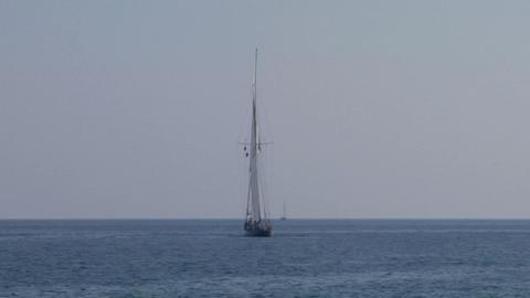 old sail regatta 25 Stock Video Footage