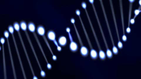 DNA molecule animation Stock Video Footage